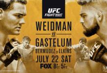 UFC on FOX 25